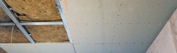 Отделочные материалы для обшивки потолка в гараже